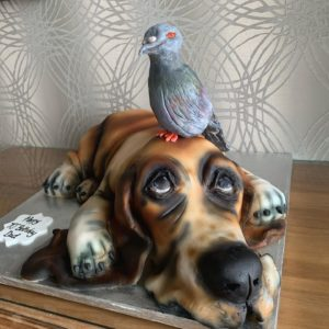 cute dog with pigeon cake