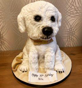 cute little dog cake